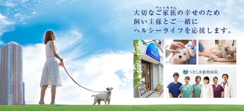 犬・猫の診療/東京都中央区/